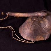 1968.10.0139 (Shell, turtle) image