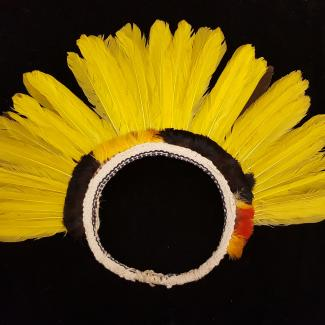 1970.78.10.0012 (Headdress) image