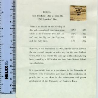 1972.26 (Chip, wood) image
