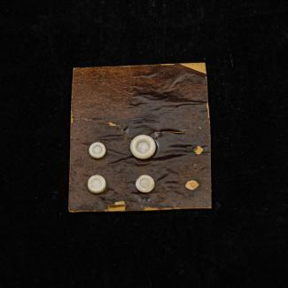 1970.47.3.993 (Button) image