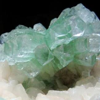 Rocks : Fossils : Minerals Image