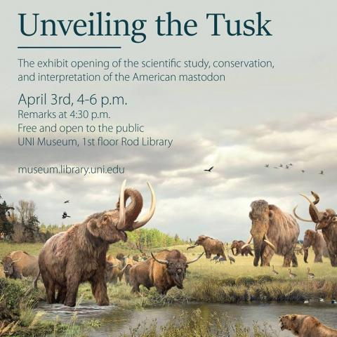 The Conservation and Exhibition of the Hampton Mastodon Tusk Image
